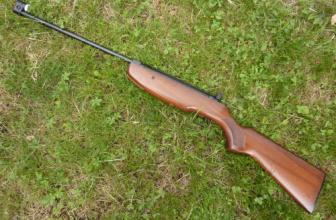 Pourquoi acheter une carabine à plomb?